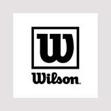 <h5>Wilson</h5>